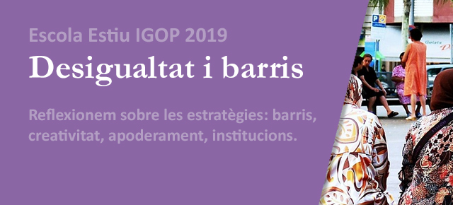 Escola Estiu IGOP 2019